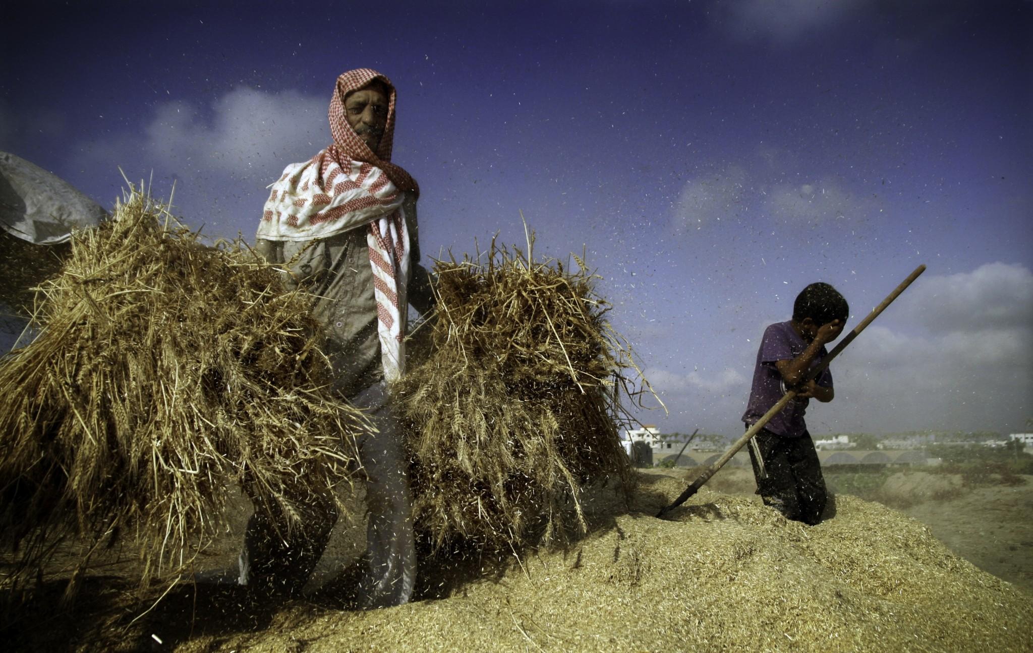 أحد الأهداف الرئيسية لفرض الإغلاق على قطاع غزة، وبشكل مُعلن، كانت الحرب الاقتصادية، وإسرائيل كانت قد فرضت ولا تزال تفرض سلسلة من التقييدات الاقتصادية على القطاع، والتي أعاقت إلى حد كبير نمو اقتصاد مزدهر. تصوير: إيمان محمد