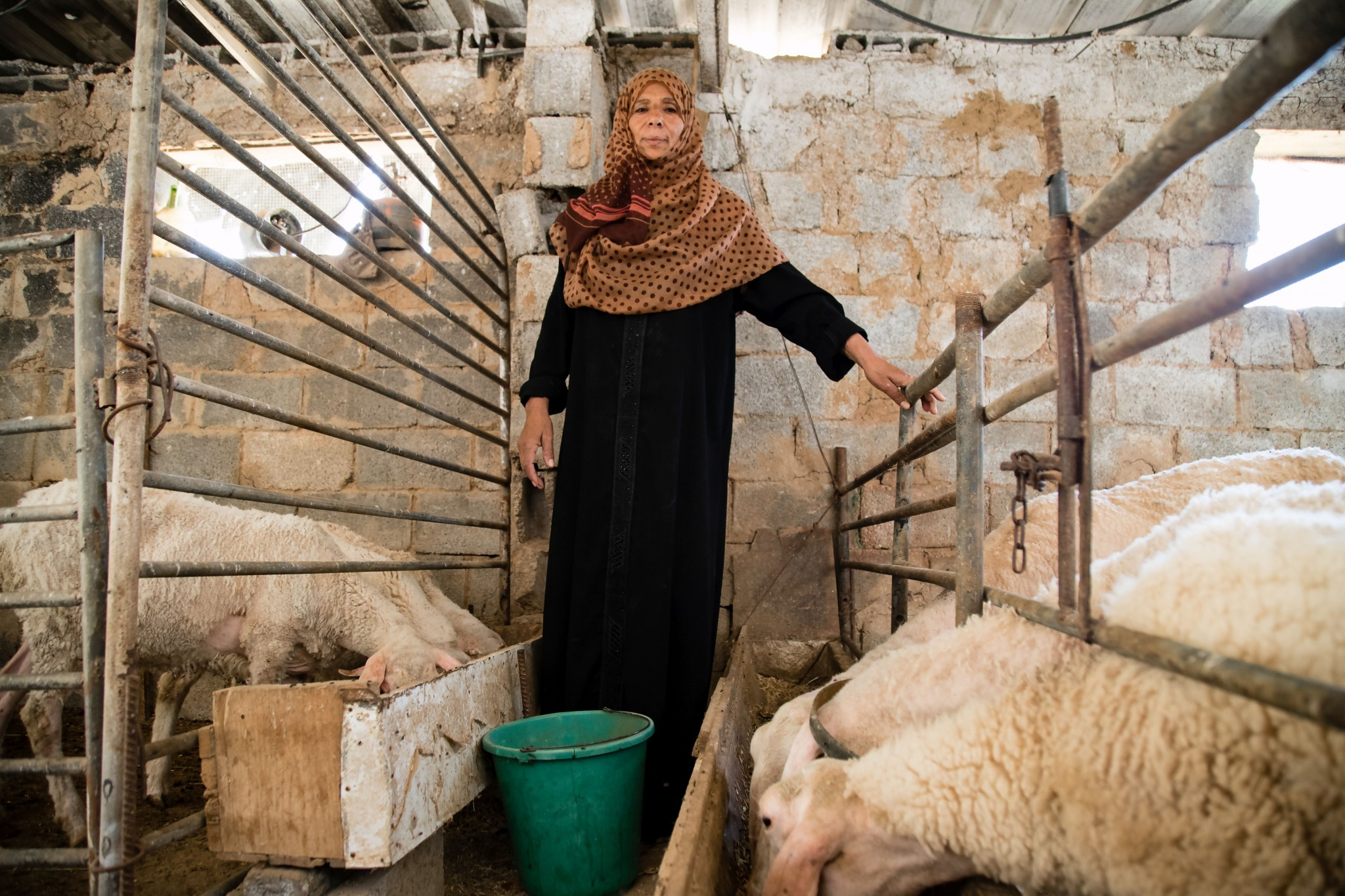 Suhaila Najjar, herder in the buffer zone, June 2018. Photo by Gisha