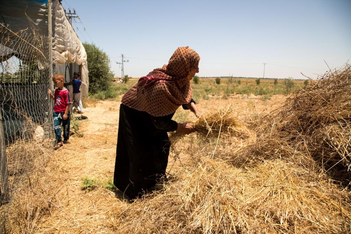 רועה ומשפחתה באזור החיץ, יוני 2018. צילום: גישה