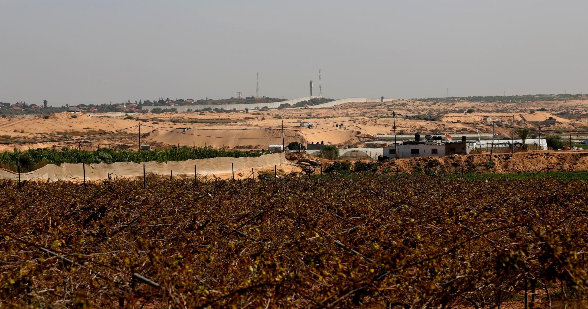 """مزروعات في المنطقة العازلة، مشهد الجدار من داخل القطاع. تشرين ثاني 2016. تصوير: """"ﭼيشاه – مسلك"""""""